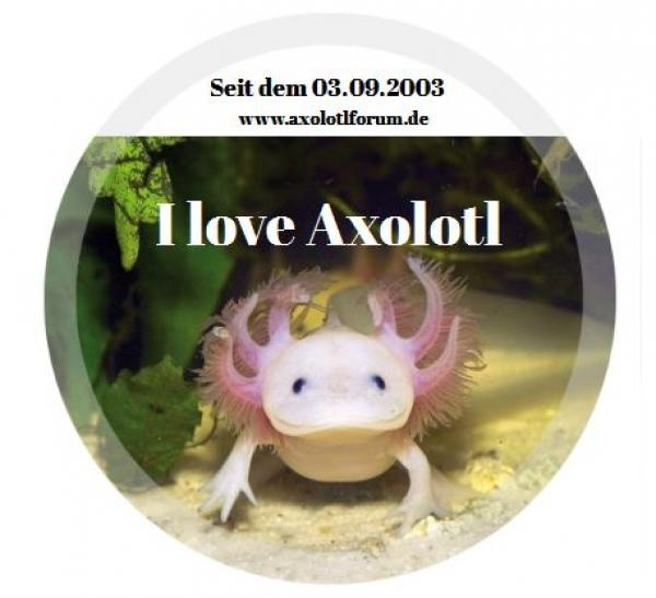 AOF Button 38mm